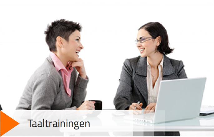 Taaltraining - Financiële vertalers